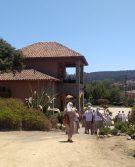 Viña Casa Marín
